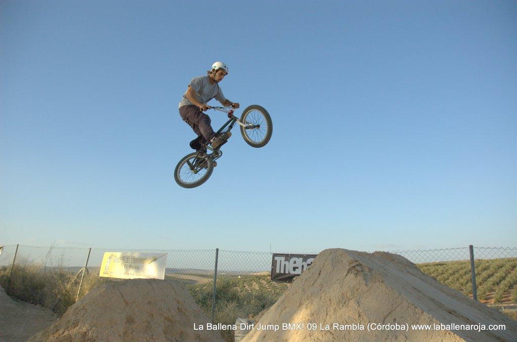 Ballena Dirt Jump BMX 2009 - BMX_09_0119.jpg