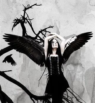 Raven Princess, Ravens