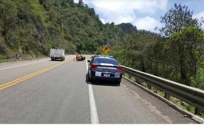 Relato de un intento de secuestro a una familia en la carretera de Cuota San, Cristóbal-Tuxtla en #Chiapas.