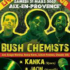 Flyer Bush Chemists sans bord.jpg