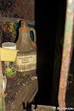 Hmmm, wheat germ oil & honey shampoo!