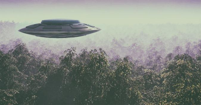 Algumas das melhores fotografias do OVNI até à data foram tomadas sobre uma floresta misteriosa na Romênia