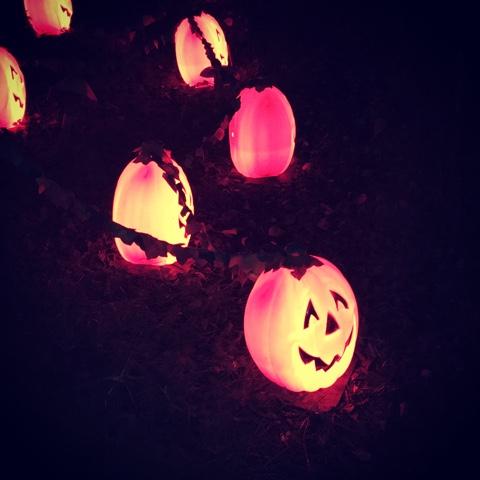 Bewildered glorious glowing lantern parade
