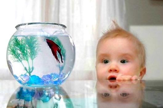 akvarium-deti