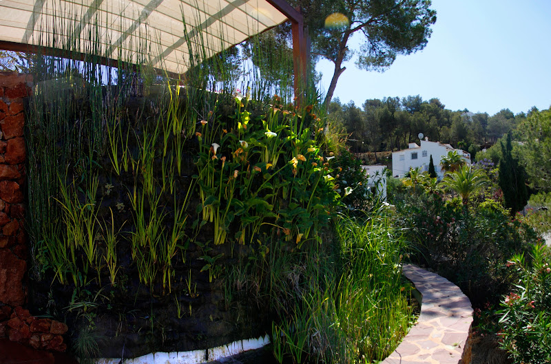 Primera piscina natural depurada por un jard n vertical Piscina natural jardin