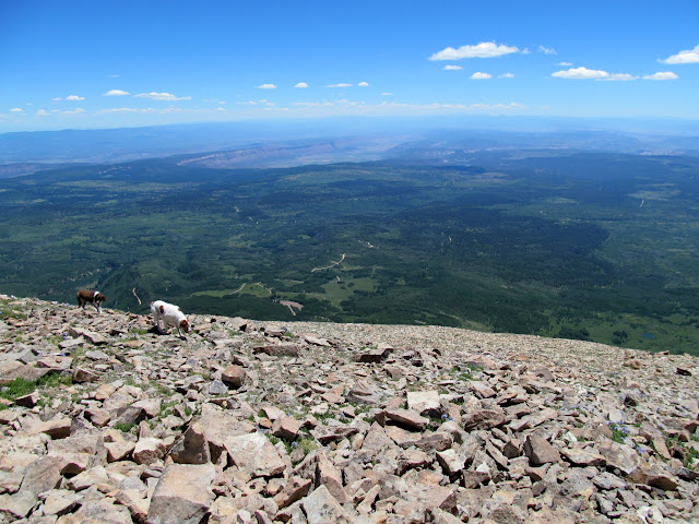 Paradox Valley viewed from Mount Peale summit