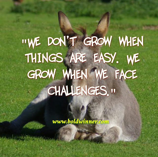 What's your response to challenges?