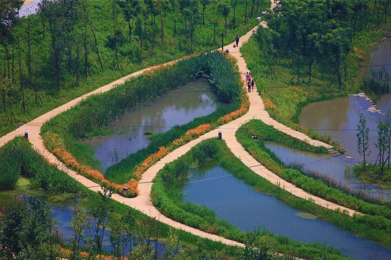 yanweizhou-park-2