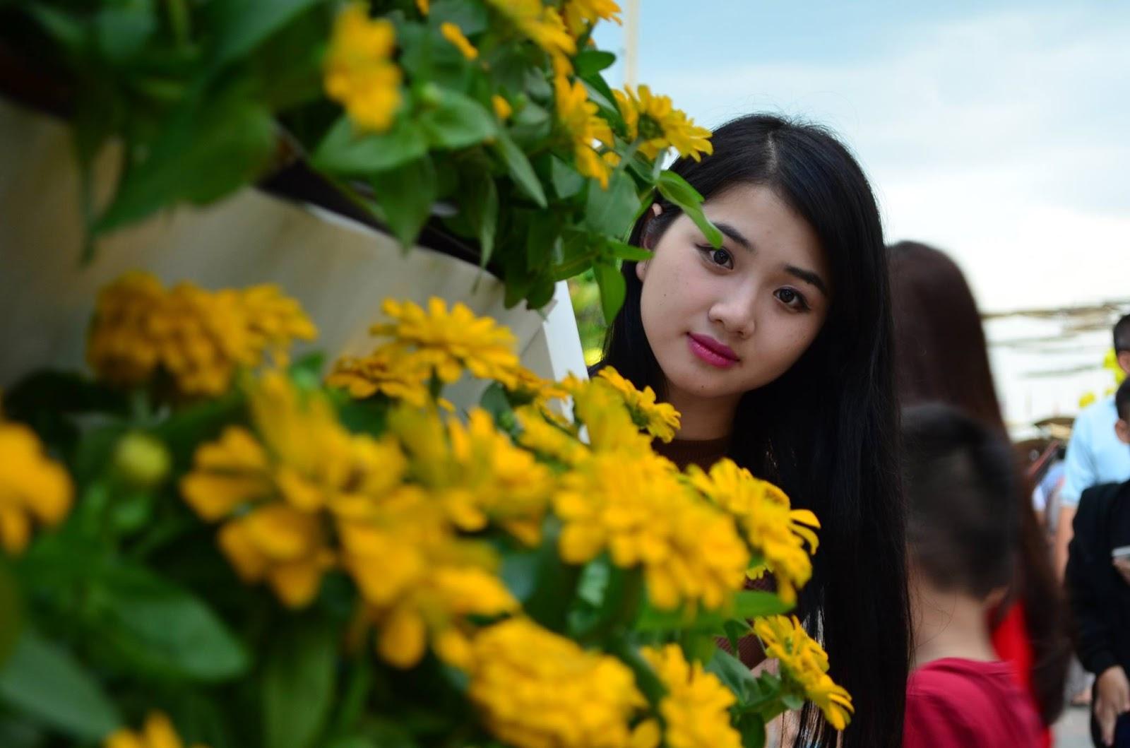 Tôi thấy hoa vàng
