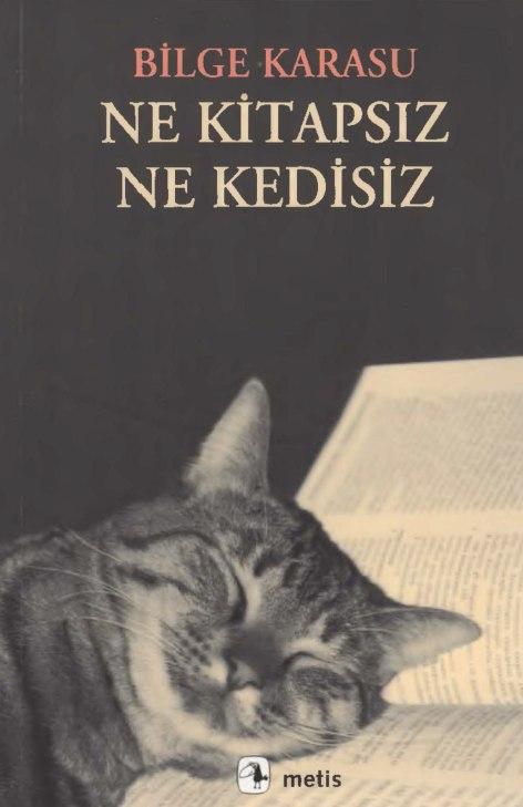 Bilge Karasu - Ne Kitapsız Ne Kedisiz