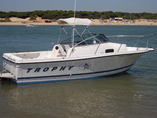 TROPHY WALKAROUND BAYLINER