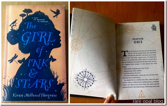 the girl of ink and stars book