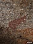 Aboriginie Art