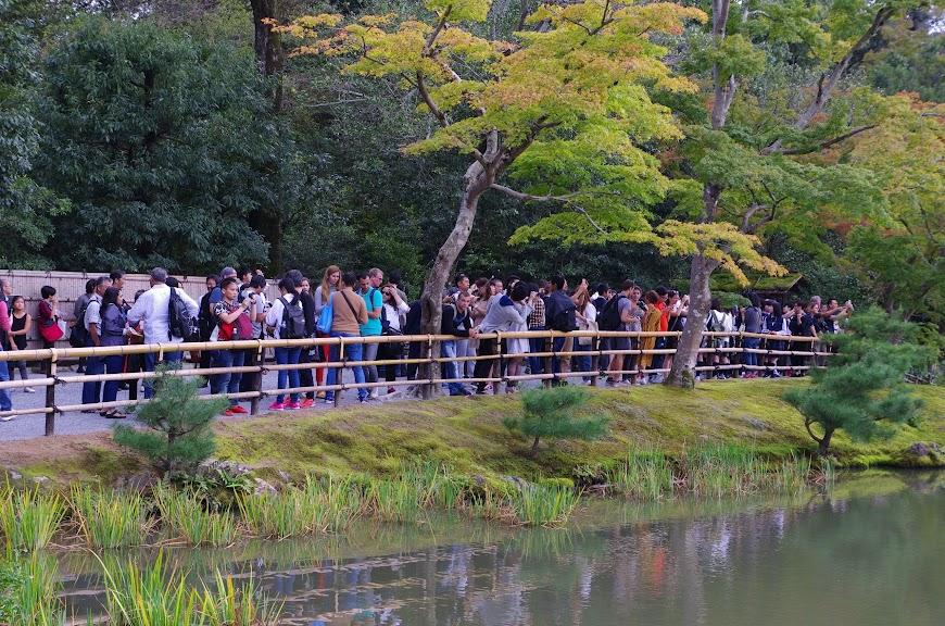 kyoto_2016_0116.JPG