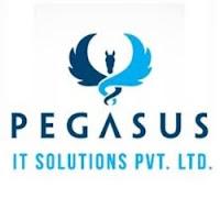 Pegasus Panacea