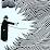 Jan Koops's profile photo