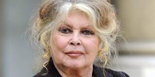 Vague de terrorisme en France: Brigitte Bardot insulte les musulmans!