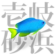 壱岐砂浜図鑑