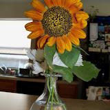 Bouquets - 101_4290.JPG