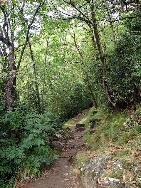 senderismo - Miradores de la Garganta de Escuaín