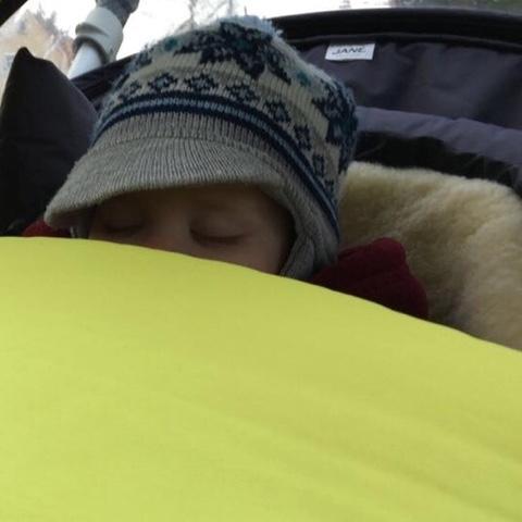 Der Knuddelkäfer schläft im Kinderwagen