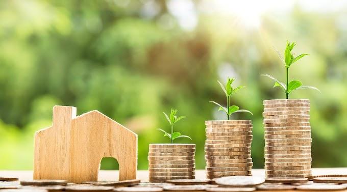 Osinkoraportti - Kesäkuu 2021: Osinkotulot noin 150 euroa