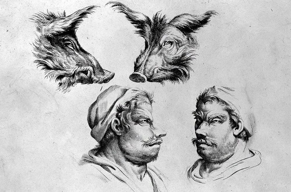 charles-le-brun-physiognomic-heads-8