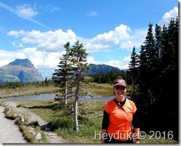 Hidden Lake Trail Glacier NP MT 088