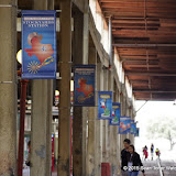 03-10-15 Fort Worth Stock Yards - _IMG0789.JPG