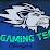 Lion GamingTech's profile photo