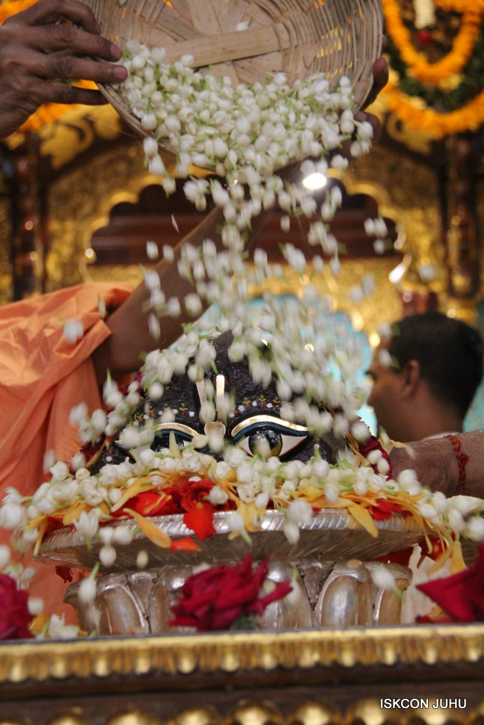 Govardhan Abhishek Darshan  At ISKCON Juhu on 31st Oct 2016 (82)