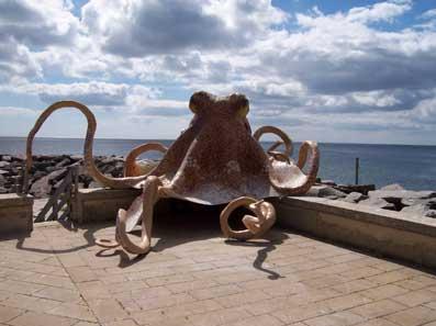 største blæksprutte