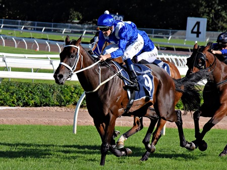 qe stakes_winx 1