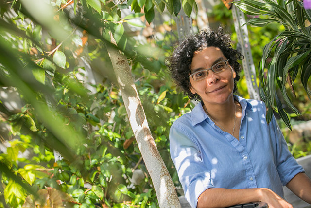 Liliana M. Dávalos, Professor of Ecology and Evolution. Photo: Stony Brook University