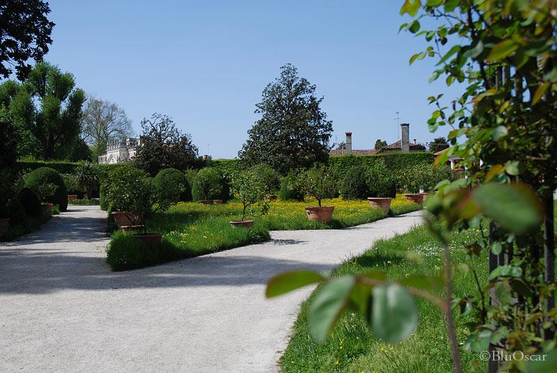 Villa Pisani 65a