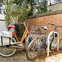 117 Front Bike Rack