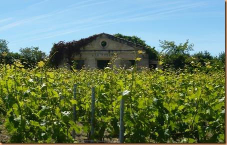 St Emilion the buildings9