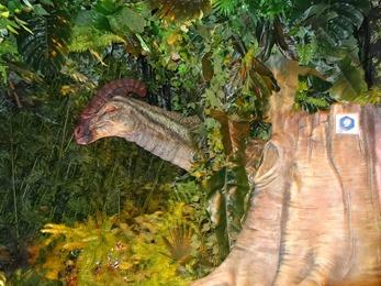 2018.04.30-001 Parasaurolophus