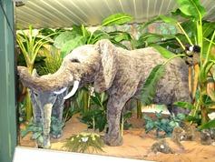 2015.12.07-012 éléphants