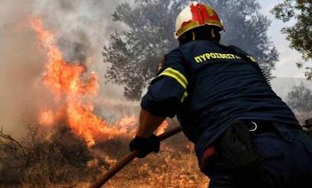 Φωτιά τώρα στην Κερατέα - Επιχειρούν ισχυρές πυροσβεστικές δυνάμεις