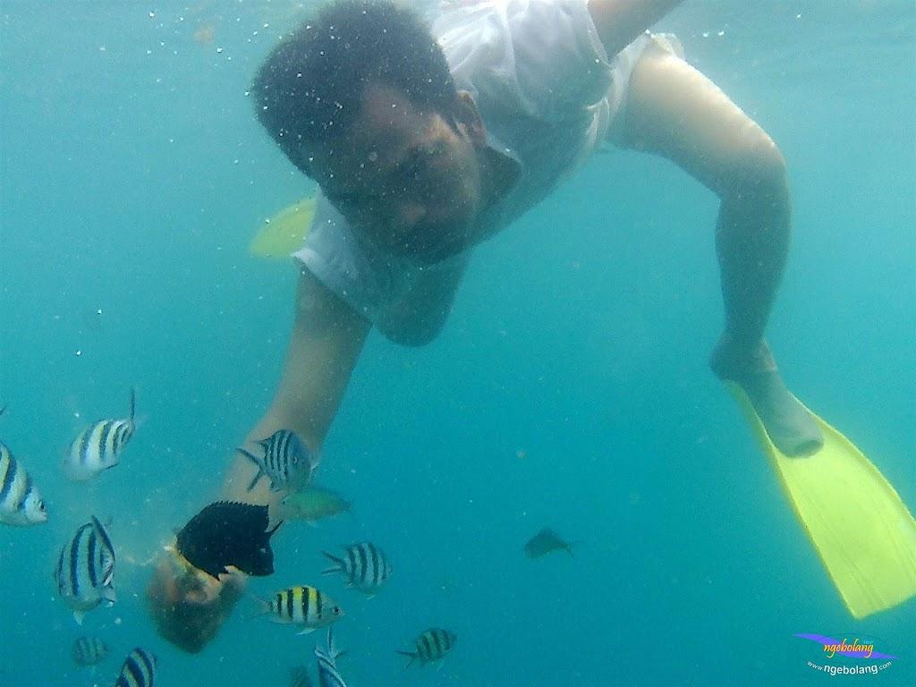 pulau pari 050516 GoPro 21