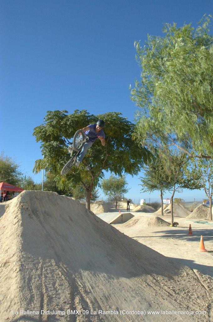 Ballena Dirt Jump BMX 2009 - BMX_09_0071.jpg