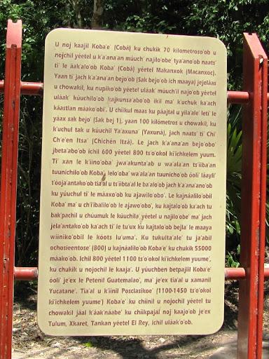 scriere maya in prezent