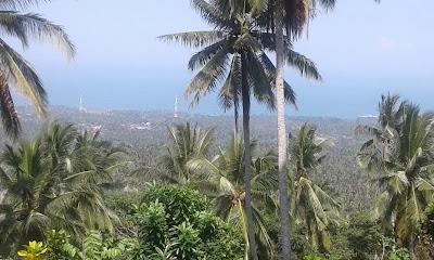 Dijual tanah di Surabrata, Tabanan, Bali, dekat dengan Tukad Balian.