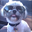James Eitzen's profile photo