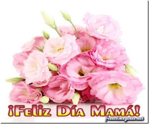 dia de la madre  tratootruco (2)