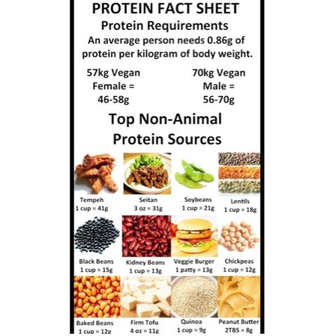 Plant based Protein!