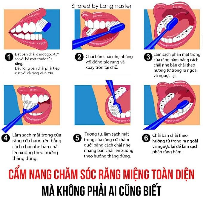 Cách vệ sinh răng đúng