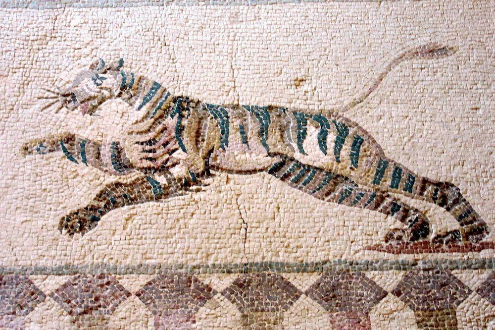 paphos-mosaic-7