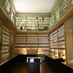 Château : bibliothèque